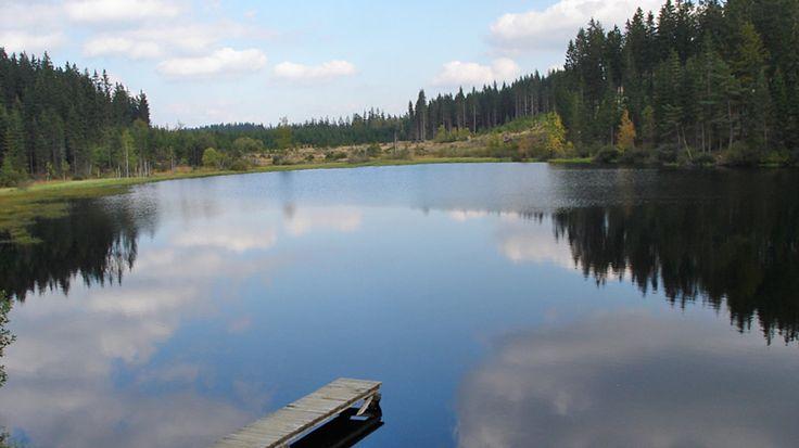 Zahlreiche #Naturbadeplaetze an #Teich, #See und #Fluss warten im #Muehlviertel darauf entdeckt zu werden. Mehr dazu unter http://www.muehlviertel.at/naturbaden