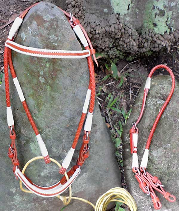 88eefac8a80103d002b28189e0f924e0 cords stitching 20 best our show bridles are available in western, american and wire harness in spanish at soozxer.org