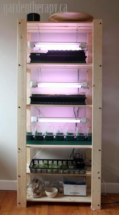 Ikea GORM Seed Starting Shelf with grow Lights on (Medium)