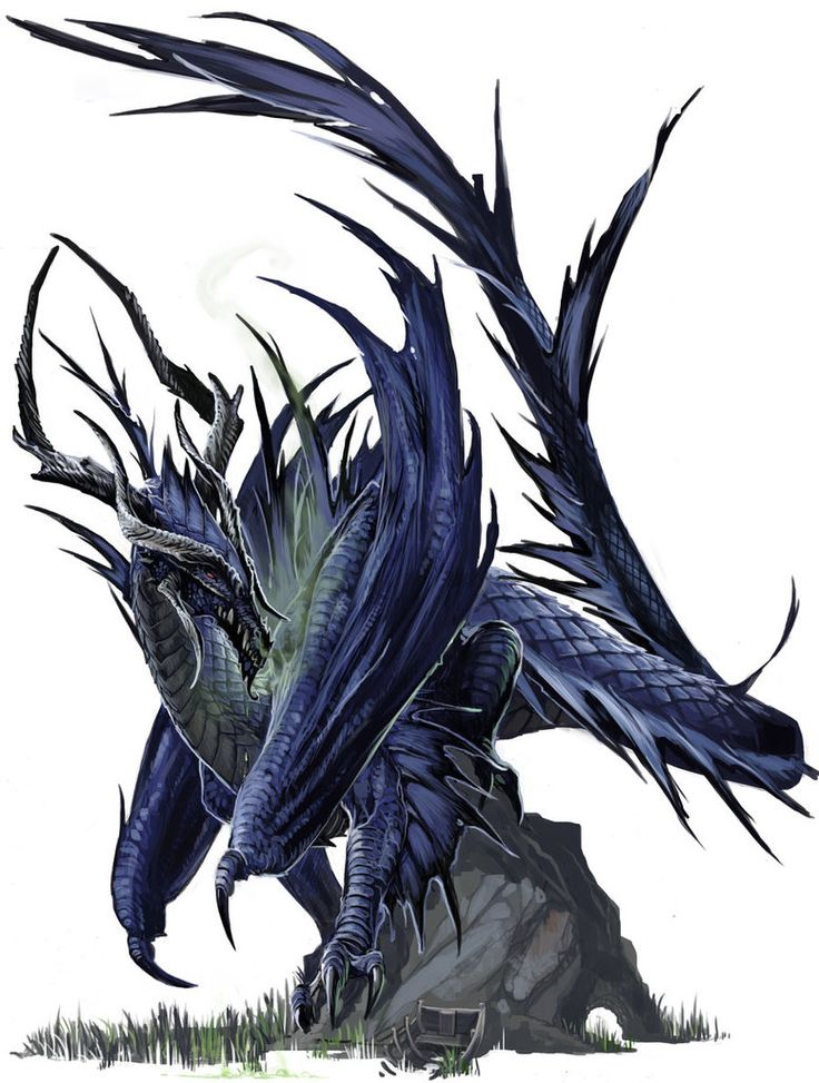 Ancient Black Dragon by BenWootten
