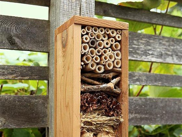 32 best images about jardin insectes on pinterest gardens insect hotel and bee house. Black Bedroom Furniture Sets. Home Design Ideas