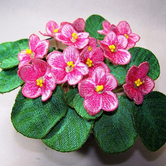 Pink african violets d embroidery flowers pinterest