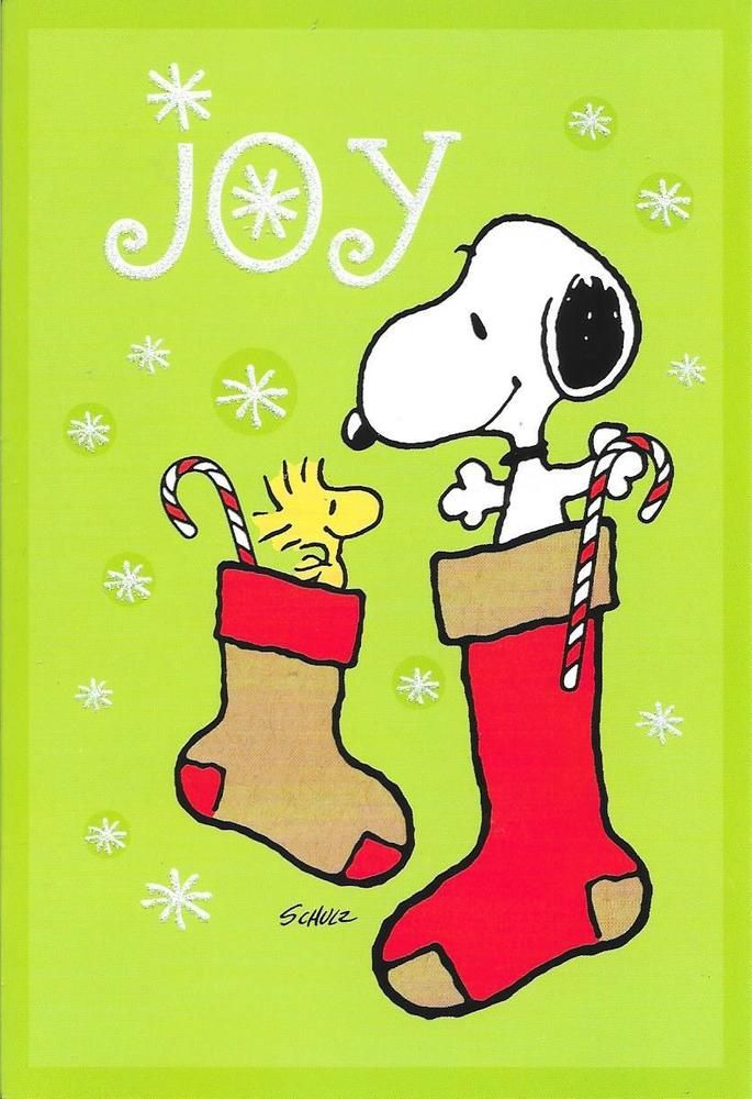 Snoopy & Woodstock Stocking Joy