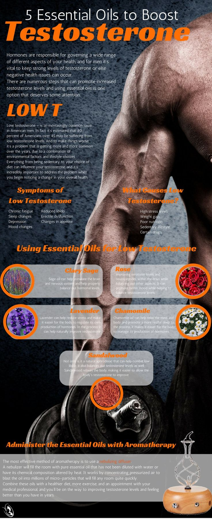 5 Essential Oils to Help Boost Testosterone Infographic #OrganicAromas  Essential oils are quickly becoming one of the most respected natural remedies available, in large part due to the effectiveness they seem to provide. In the case of low testosterone, there are several different options that are worth looking at for the impact they can have on your testosterone levels.