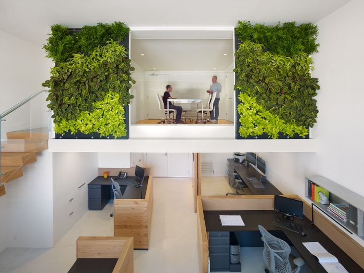 san francisco leed certified office with a vertical garden - Interior Design Leed Certification