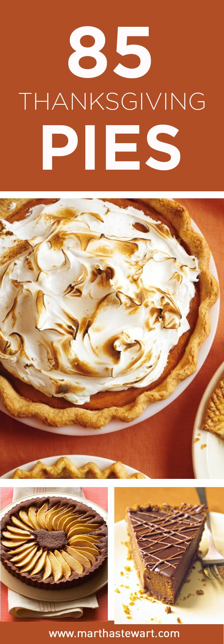 At Thanksgiving time, dessert is just as important as the main meal. Find all the familiar sweet flavors of Thanksgiving, plus some new variations, in our collection of mouthwatering pies and tarts.