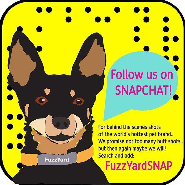 FuzzYard on Snapchat!