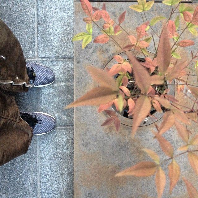 χωρίς φίλτρο  #urbansightstories #thessaloniki #adidastorsion #adidaswomen #adidas #fromwhereistand