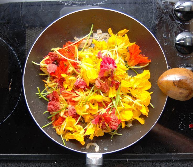 Objevte s námi jedlé květy, kterými můžete ozdobit vašeho pokrmy a podpořit své zdraví
