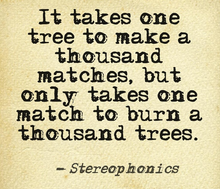 A Thousand Trees - Stereophonics