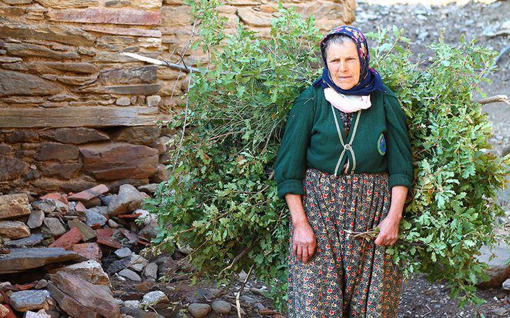Lübbey Köyü