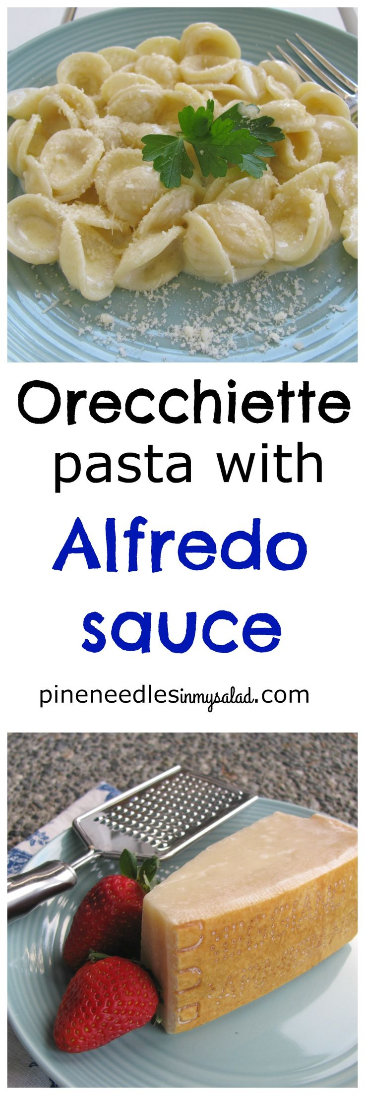 This family favorite is rich, creamy and cheesy. Your kids will love orecchiette…
