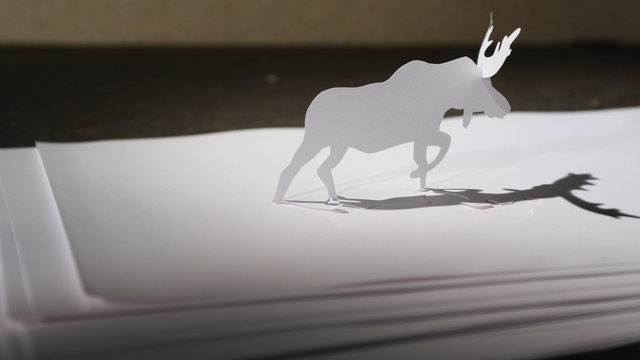 Paper Pour Féliciter 2010! by Veronyka Jelinek. Stop-motion animation of moose walking in the snow made from paper.
