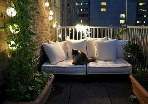 Awesome balcony (w/out the kitty)