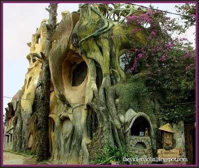 The Hang Nga Tree House Hotel, or Spider Web Chalet, an unusual attraction located in Dalat, Vietnam.