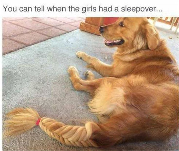 The girls had a sleepover!