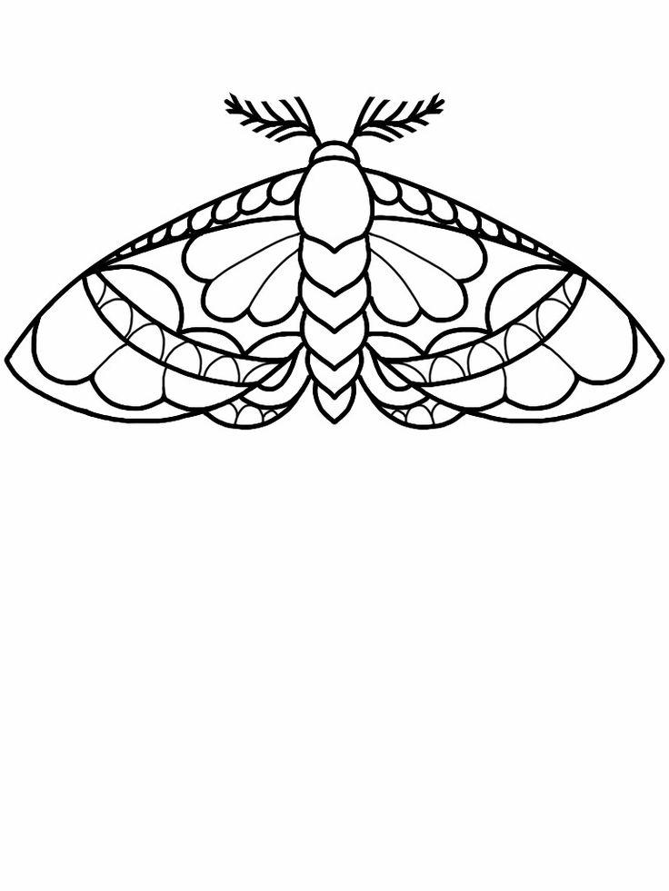 Moth tattoo flash design by nico di pisarro