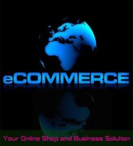 ECommerce website @ http://www.techidea.co.nz/