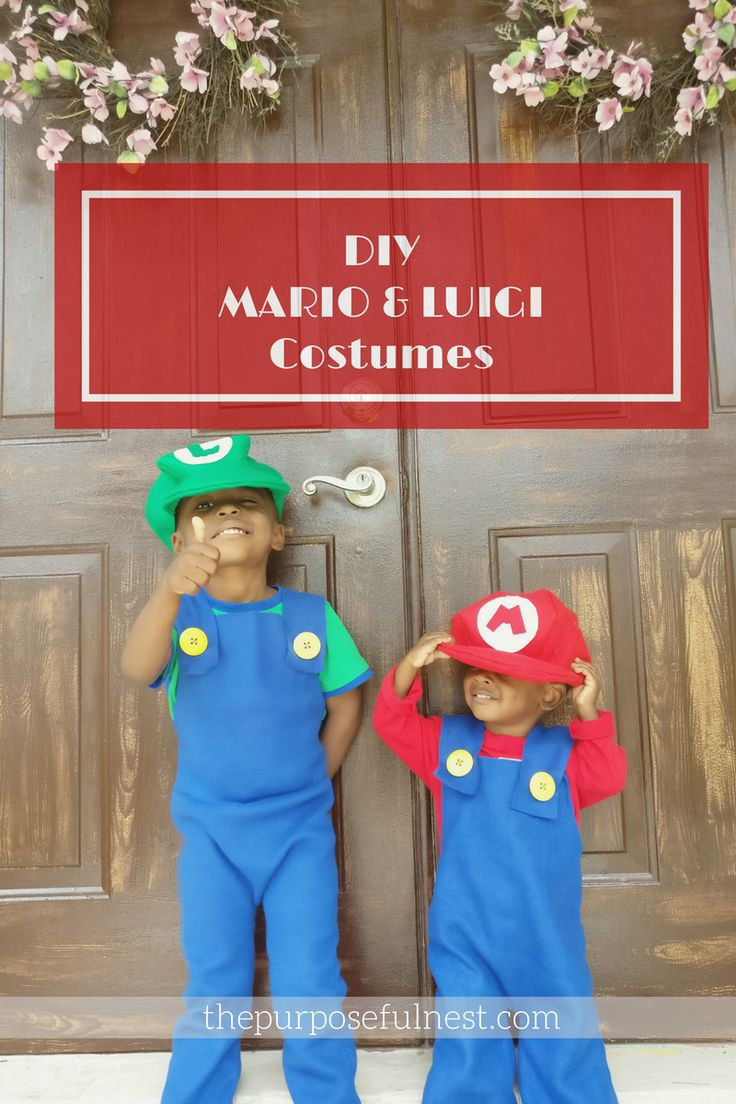 mario brother costumes