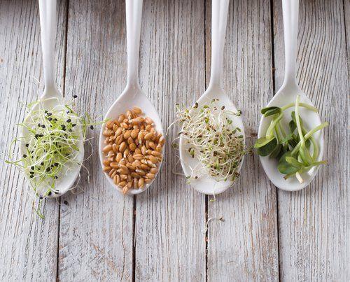 Síntomas de que necesitas enzimas digestivas. | Dra Salud