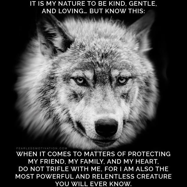 Wolf Quotes~ Don'-t ever mistake My silence for ignorance My ...