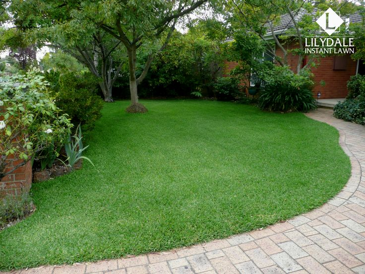 Feb - 2017 - Monthly Home Owners Competition Winner - Lilydale Instant Lawn Care | Love your lawn | Great grass | Lily & Dale | Follow us | Garden Tips & Advice | Contact us | Lawn Solutions Australia Lawn Supplier | Instant Turf |Sir Walter Buffalo DNA Certified | Lawn Solutions Australia | Online Store | Local Pick up & Delivery | Lawn Care | Turf Farm | Melbourne | Victoria | Garden | Grass