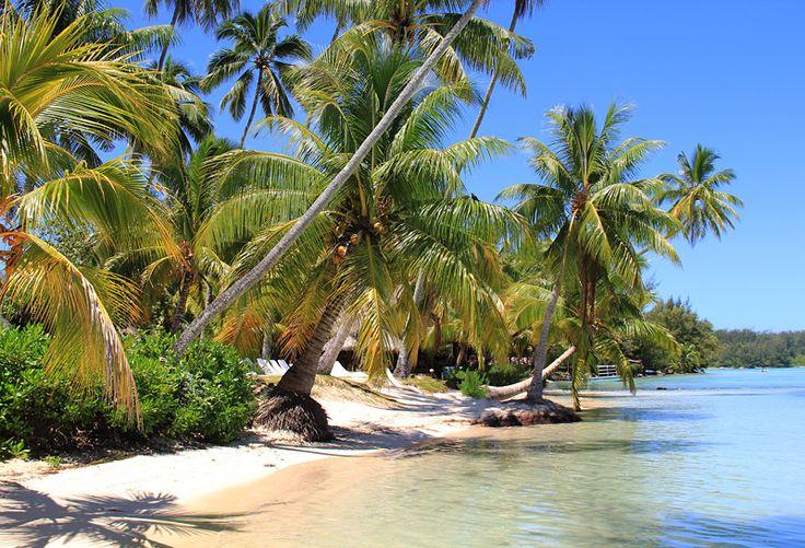 "Wandkalender ""Französisch-Polynesien - Trauminseln im Südpazifik"", Kalenderblatt September: Mo'orea"
