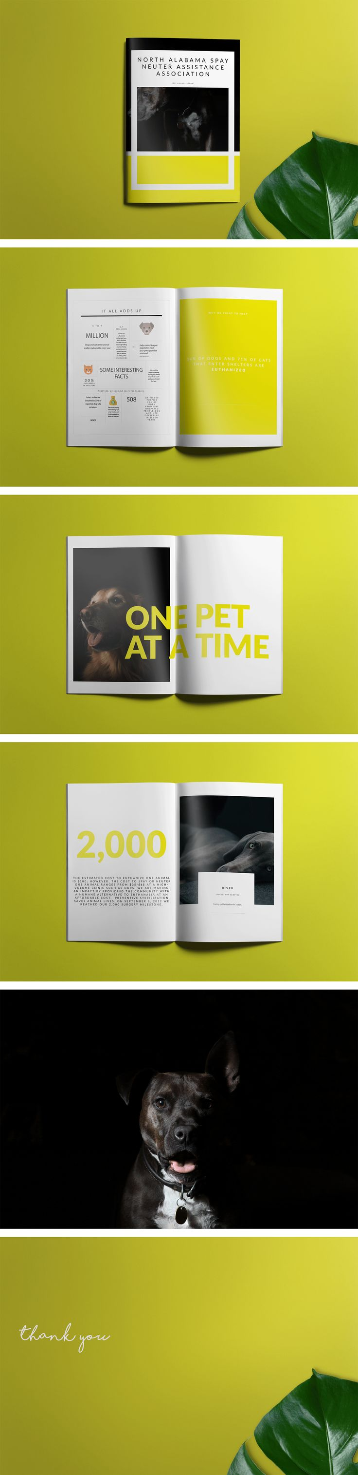 Nonprofit Annual Report | Nonprofit Organization | Year In Review | Editorial Design | Animal Shelter | Spay and Neuter