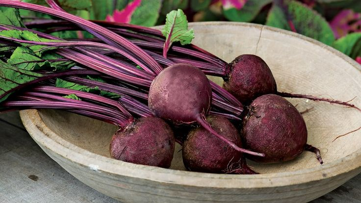 14 Best Images About Growing Beets On Pinterest Gardens Farmers Almanac And Root Cellar