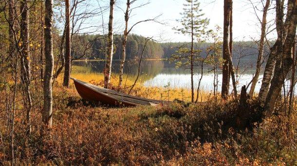 Erämaan rauhaa Rokualla | Suomen Luonto. Peace of nature in Finland.