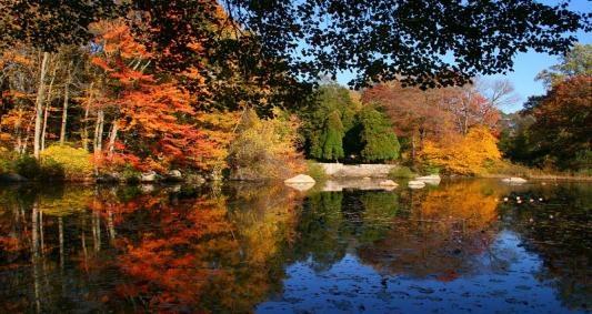 Connecticut College Arboretum, New London, CT