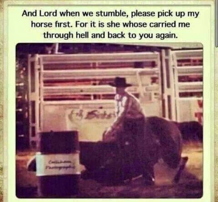 GREAT QUOTE TO LIFE BY !! - I kept this one in my mind when my horse and me went down at the barrel race a couple days ago