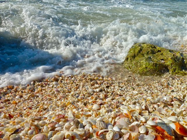 Seashell Beach, Captiva Island, FL - you have to see this with your own eyes to full grasp the beauty of this place.  It is so beautiful and amazing.