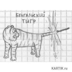 SETI.ee   Смешные рисунки   Галерея   Новости 12