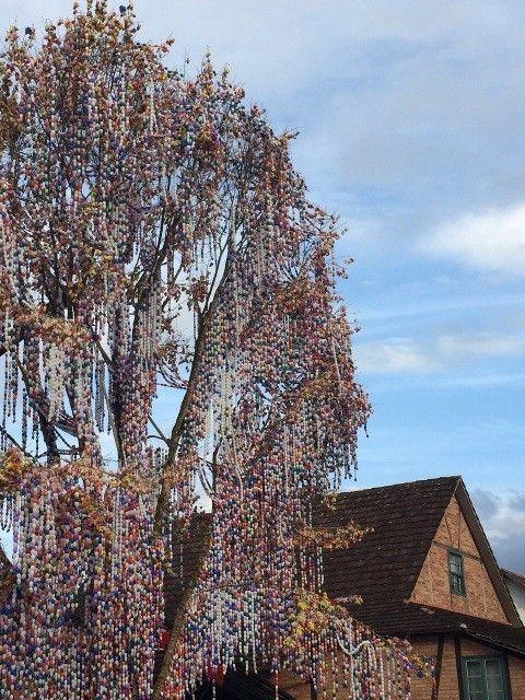 osterbaum, árvore de páscoa em pomerode (Foto: Rejane Koch Goede/Divulgação)