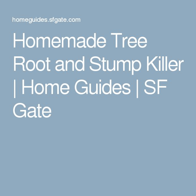 Homemade Tree Root and Stump Killer | Home Guides | SF Gate