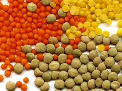 La lentille http://www.naturalia.fr/dico-lentille-lens-esculenta-14-176.htm