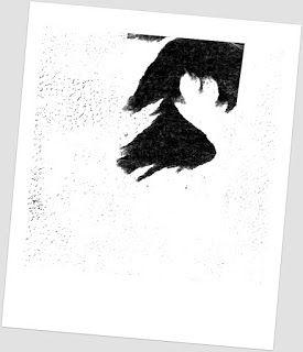 Satu Ylävaaran grafiikkaa: Negative SiouxSie