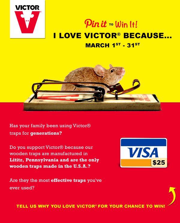 11 Best Rodent (Rat & Mouse Repellent) Images On Pinterest