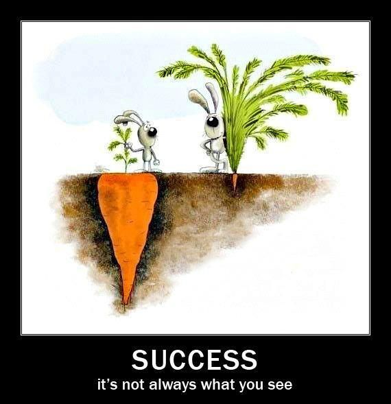 Success it's not always what you see