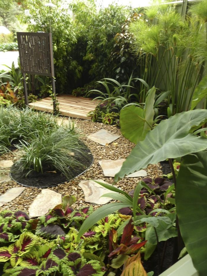14 best tropical garden ideas melbourne images on for Tropical garden designs