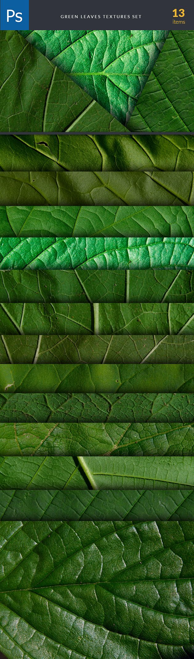 Green Leaves Textures are part of The Ultimate Textures Bundle. Find and buy them here: https://www.inkydeals.com/deal/the-ultimate-textures-bundle-2/