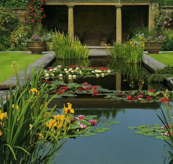 17 best images about tintinhull garden on pinterest for Garden design yeovil