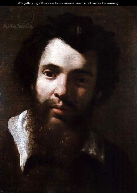 Portrait of Agostino Carracci, brother of the artist - Annibale Carracci