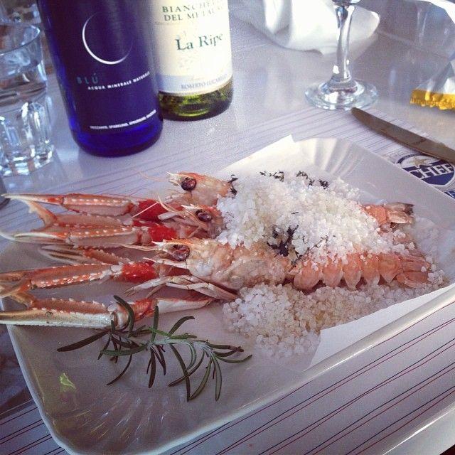 #fano #bar #ristorante #pescheria #gastronomia #fishhouse #seafood #chef #scampi #sale #cervia #acqua #galvanina #bianchello #metauro #robertolucarelli #porto #turistico #