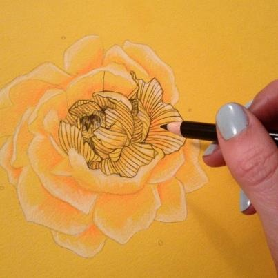 peony line drawing. tattoo inspiration