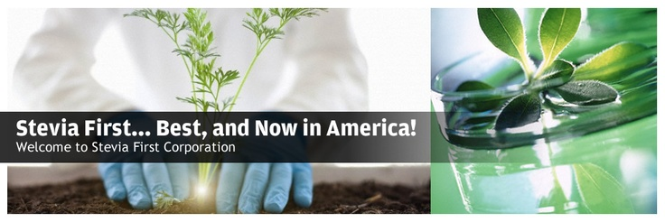 Stevia First... Best, and Now in America! Welcome to Stevia First Corporation
