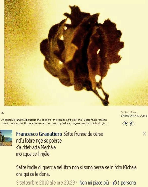 Sette foglie di quercia e il commento di Granatiero con una bella quartina in dialetto garganico.