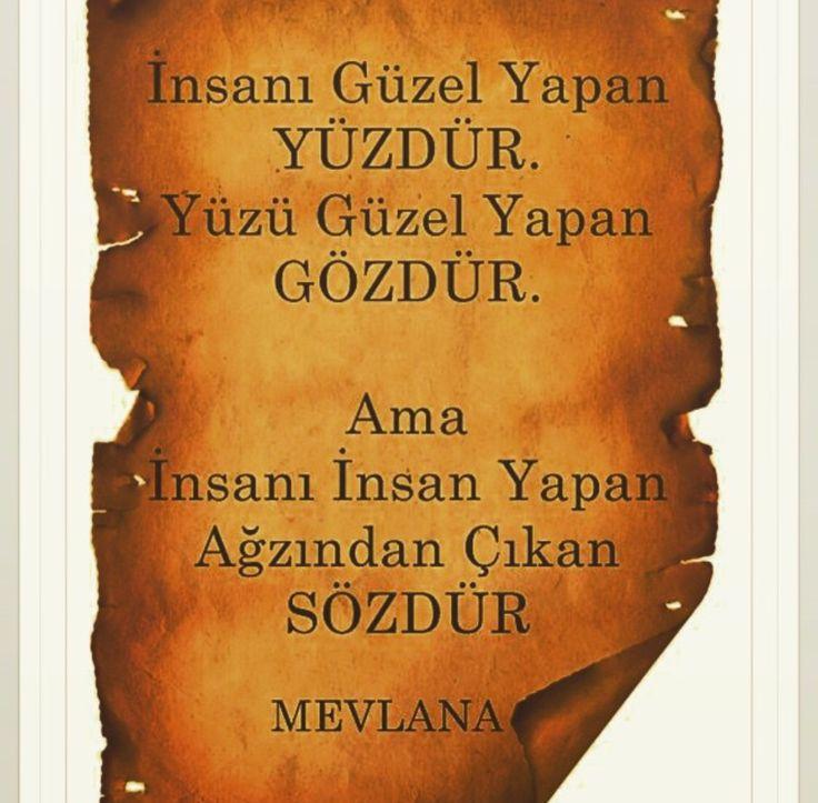 Mevlana Yasemin Aksu
