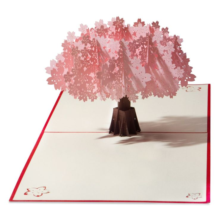 Find beautiful handmade paper cards that pop like magic. Our cards surprise and delight. Truly one of a kind.